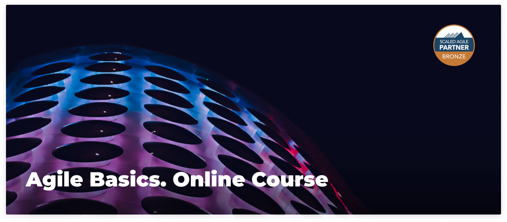 Agile Basics Online Course